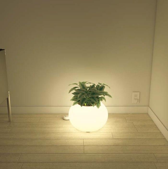 interiorlight_11.jpeg