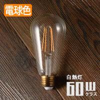 スワン電気 LED エジソン型電球 60W相当形 EDISONSWB-E002L