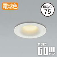 小泉照明 arkia LEDダウンライト 防雨防湿型 AD1107W27