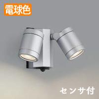 コイズミ照明 LEDアウトドアスポットライト AU43322L