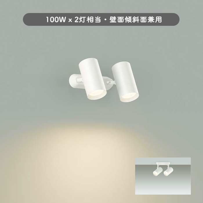 DSL-5330YWG 大光 2灯式スポットライト