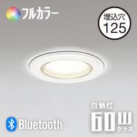 odelic OD261030BR Bluetooth 浴室灯