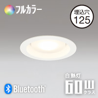 ODELIC OD361005BR LEDダウンライト フルカラー