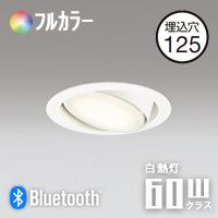 ODELIC LEDダウンライト OD361015BR ユニバーサルタイプ