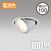 odelic ユニバーサル  LEDダウンライト・マットシルバー OD361156・電球色