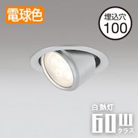odelic ユニバーサル  LEDダウンライト・マットシルバー OD361162・電球色