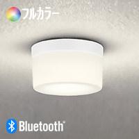 odelic OG254846BR Bluetooth 浴室灯