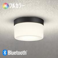 odelic OG254847BR Bluetooth 浴室灯