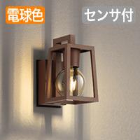 odelic OG254872LC LEDポーチライト
