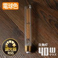 LED SWAN BULB DIMMER 調光可能 ビーコン形